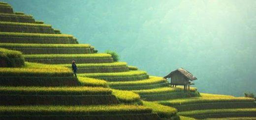 Procházky po Asii